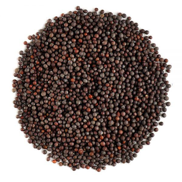 Semillas de mostaza negra ecológica